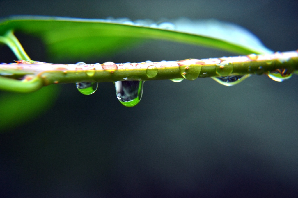 Reflecting on mindfulness