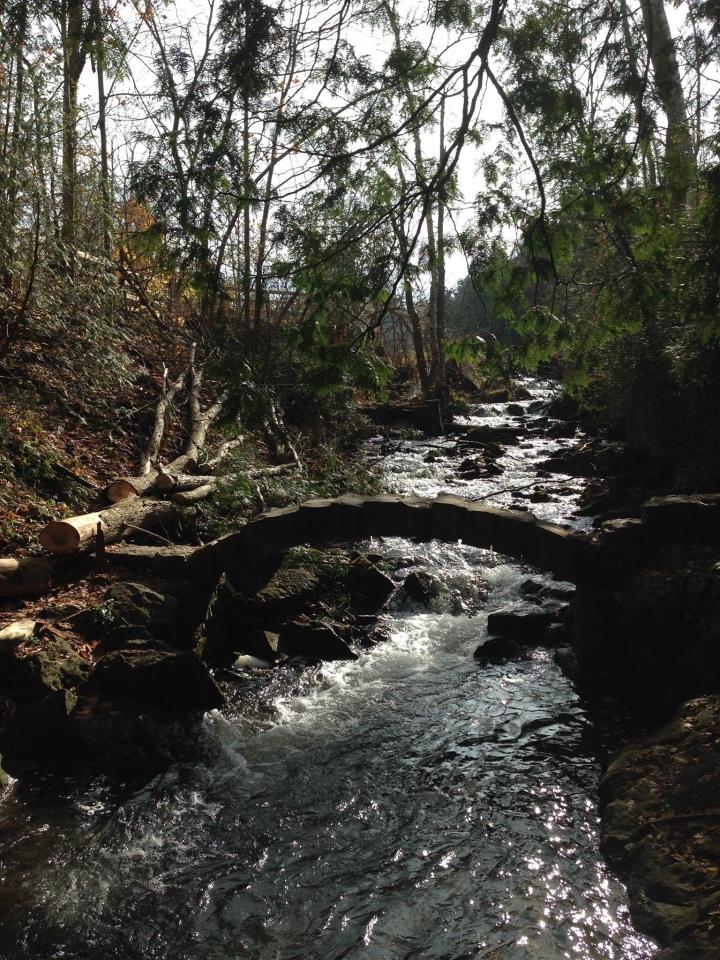 The river flowed bothways