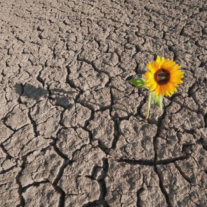 Undermining resiliency